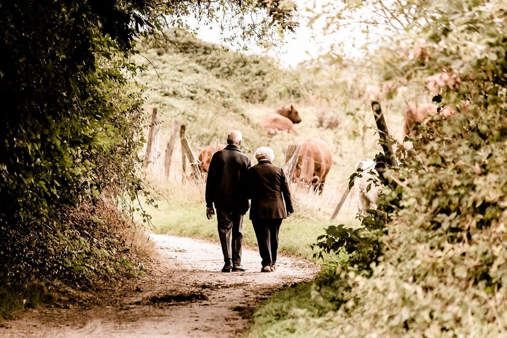 Old couple on walk