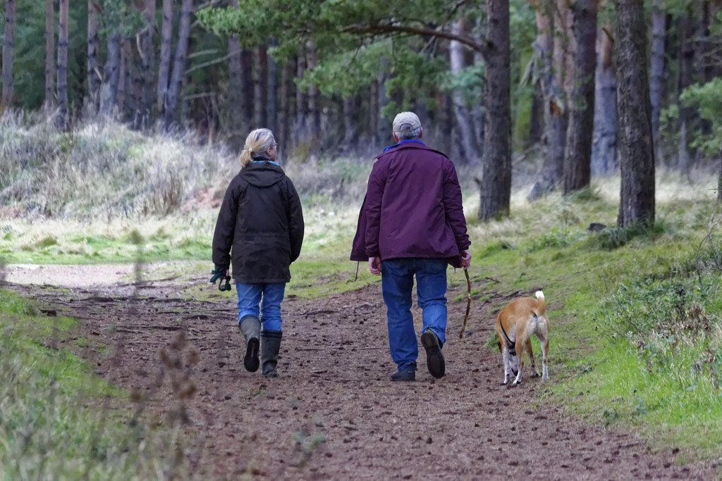Older couple walking a dog through the woods