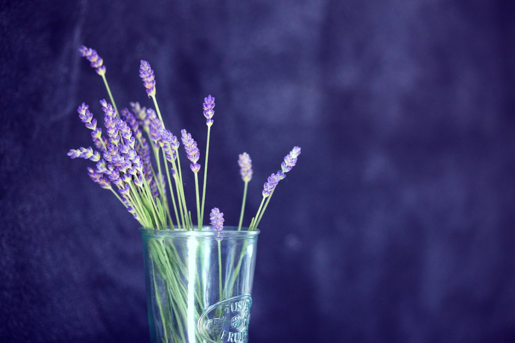 Glass of lavender